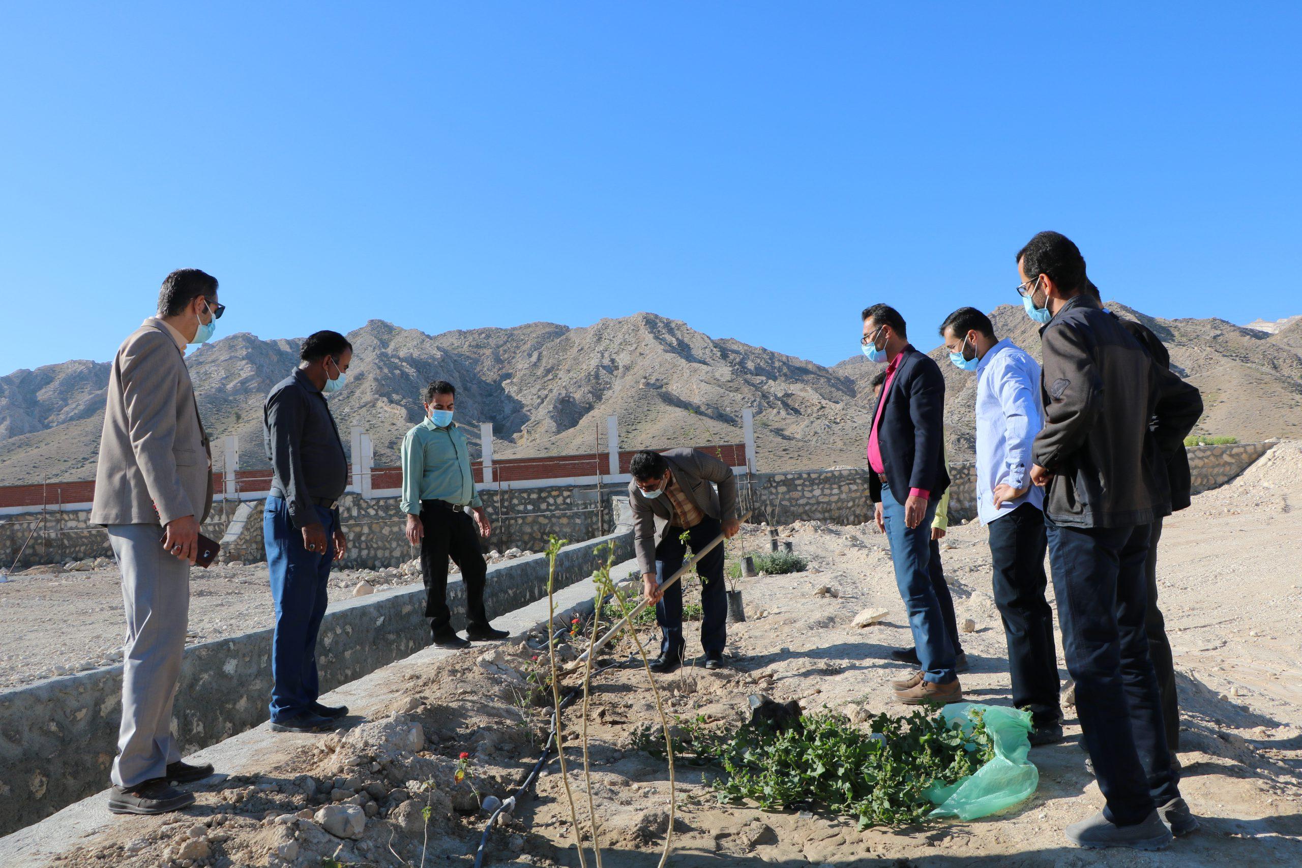 برگزاری مراسم درختکاری در دانشگاه دولتی لامرد